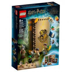 76384 LEGO HARRY POTTER CHWILE Z HOGWARTU ZAJĘCIA Z ZIELARSTWA